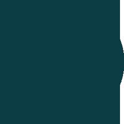 logo-japet-bleu